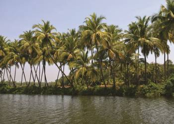 Разгон сезона в Гоа