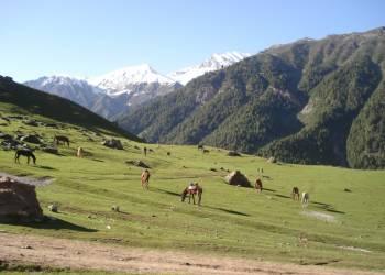 Путешествие в долину Парвати